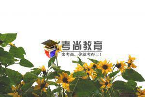2021年下半年武汉科技大学自考实践性环节考核报名通知